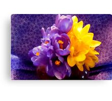 Still Life in Contrast ^ Canvas Print