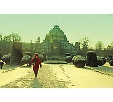 winter red hood and Palmhaus Photographic Print