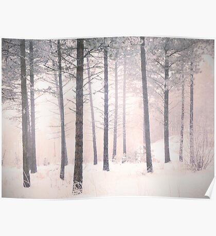 The Winter Forest Poster