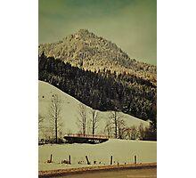 Winter Composer 5 Photographic Print