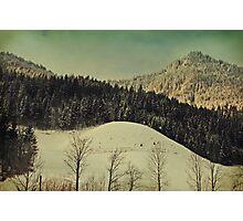 Winter Composer 4 Photographic Print