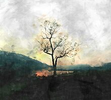 Solitary Tree Overlooking Dovestone Reservoir by Welshpixels