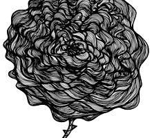 Love is a rose by tiyepyep