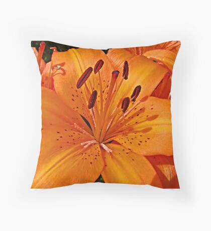 Lilies of the Day Throw Pillow