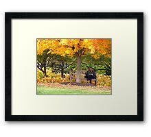 Autumn read Framed Print