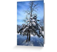 Icy blue Greeting Card
