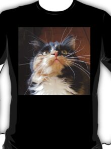 Cats Whiskers T-Shirt