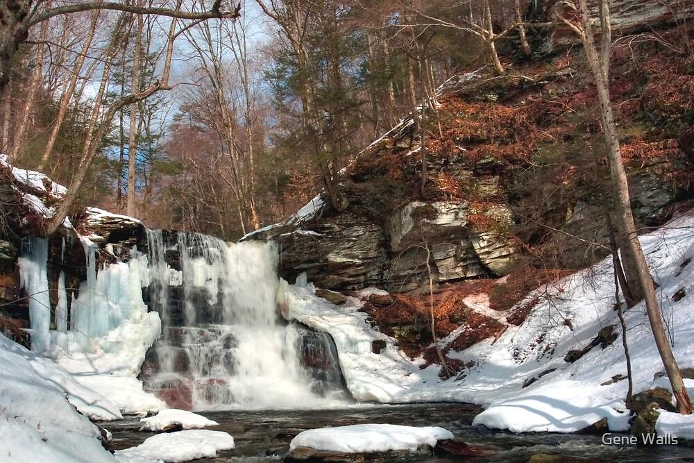 Winter Ending at Sheldon Reynolds Falls by Gene Walls