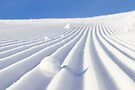 Snow Lines by Walter Quirtmair