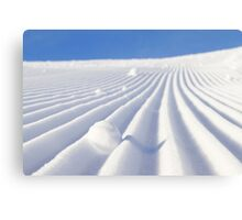 Snow Lines Canvas Print