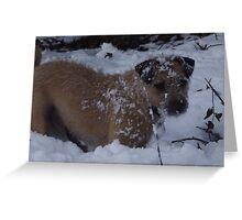 Snowdog Greeting Card