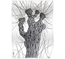 Pollard Willow Tree - Pen Drawing Poster