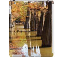 Cypress Autumn iPad Case/Skin