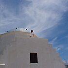 cupola of church by garish82