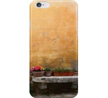 Decorative Decay... iPhone Case/Skin