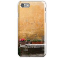 Decorative Decay... iPhone Case/Skin