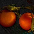Fresh oranges by Dulcina