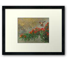 orange diagonal rufous hummingbird Framed Print