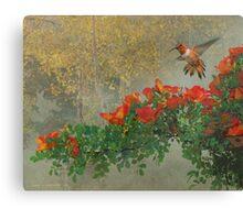 orange diagonal rufous hummingbird Canvas Print