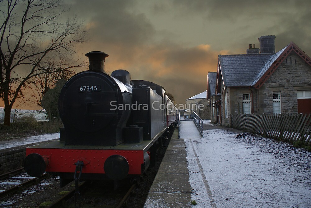 The Steam Train Is In The Station by Sandra Cockayne