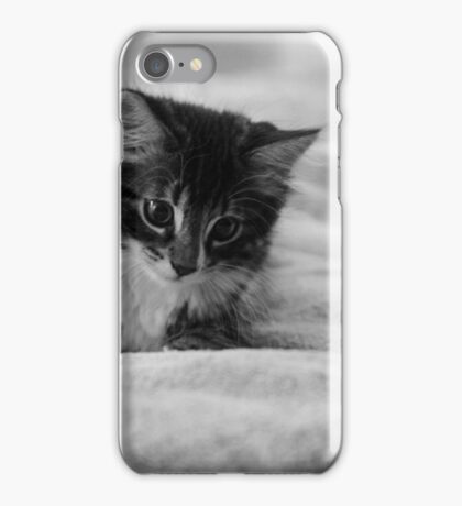 Playful Brody iPhone Case/Skin