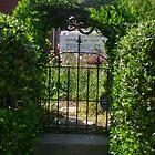 Peek into my garden by susiqfc