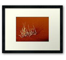 desert symphony Framed Print