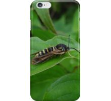 A What Wasp iPhone Case/Skin
