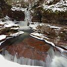 A New Year Begins At Adams Falls by Gene Walls