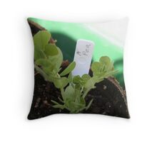 Hills Throw Pillow