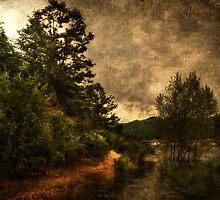 Textured lake by Roberto Pagani