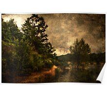 Textured lake Poster