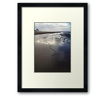 Kelp, Cannon Beach Oregon Framed Print
