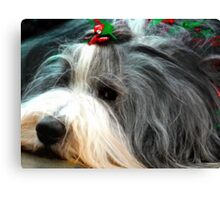 Tis the Season!  Canvas Print