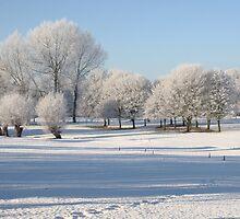 Frosty Morning by Nick Barker