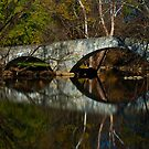 Anderson Mill Stone Bridge by ericseyes