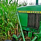 Farming Rain or Shine by Scott Johnson
