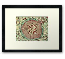Microscopic Image 2 - Scientist Framed Print