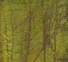 Forest Glow by Jean LeBaron