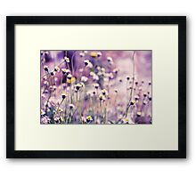 SOLD; Purple field: Explore; Got 7 Featured Work, One Explore Featured Framed Print