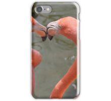 Flamingo Heart iPhone Case/Skin