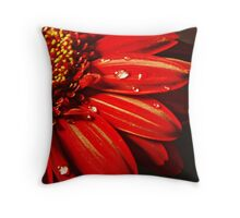 Beauty in nature. Throw Pillow