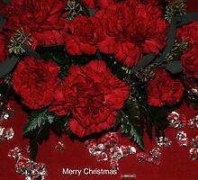 Merry Christmas by Kathleen Struckle