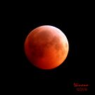 Lunar Eclipse 12-21-10 by Winona Sharp