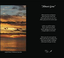 Almost Gone II by Stacy Hill