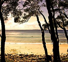 Iconic Noosa Beach by Stephen Saunders