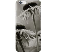 The Ladies Gather In Eager Anticipation... iPhone Case/Skin