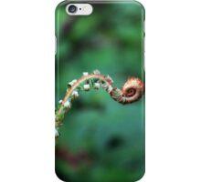 Fiddle Head iPhone Case/Skin