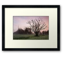 Salisbury water meadows Framed Print