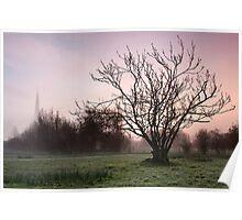 Salisbury water meadows Poster